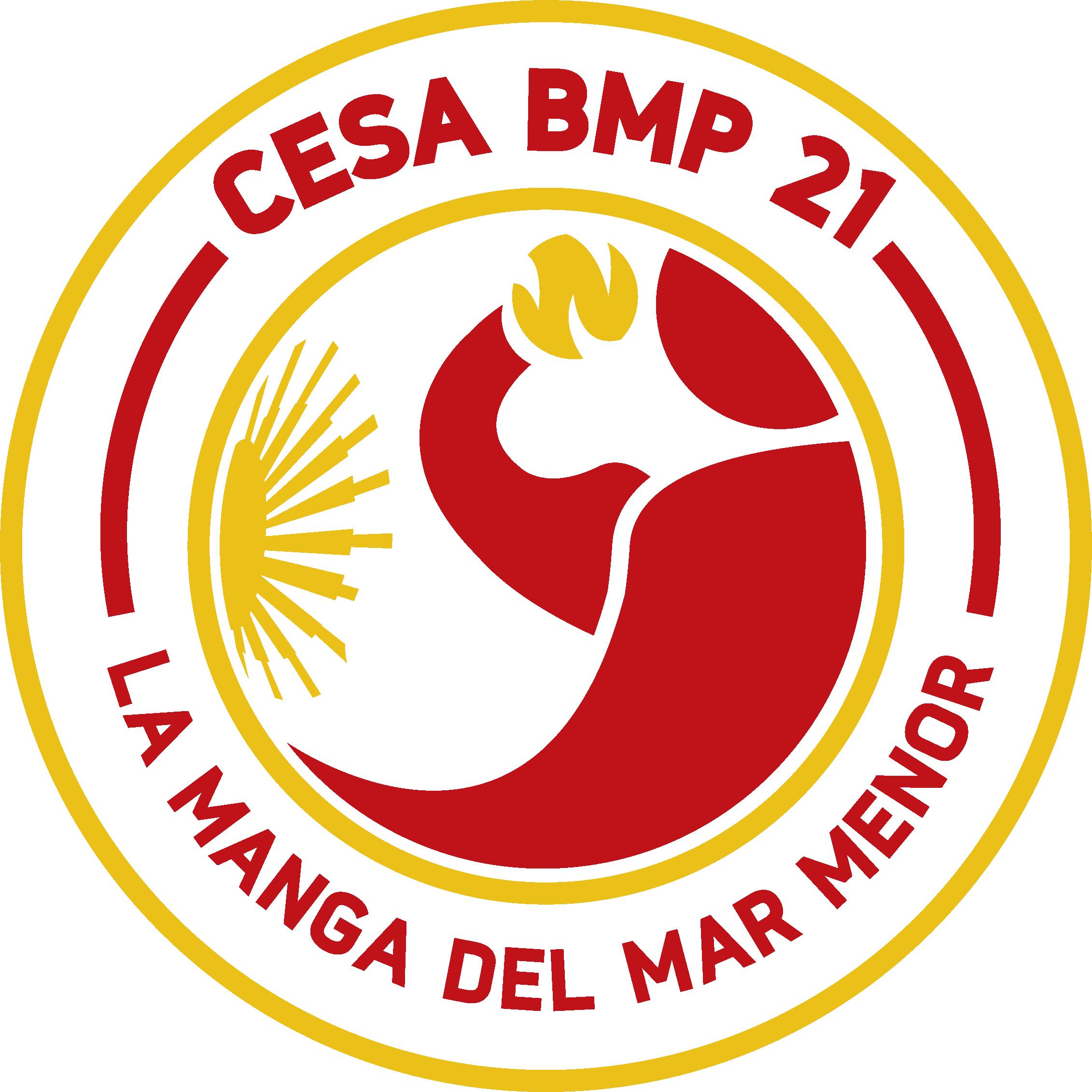 Cesaplaya2021
